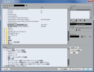 C8_macro_duplicate_track